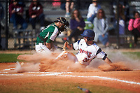 FDU-Florham Devils Garrett Ruoff (20) slides home safely as catcher Anthony Sirianni (42) fields a throw during the second game of a doubleheader against the Farmingdale State Rams on March 15, 2017 at Lake Myrtle Park in Auburndale, Florida.  FDU-Florham defeated Farmingdale 8-4.  (Mike Janes/Four Seam Images)