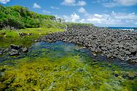 hot spring tide pool, Ahalanui hot springs park, near Kapoho, Kalapana, Hawaii, Big Island of Hawaii