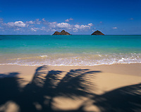 Palm Shadows & Mokulua Islands, Lanikai Beach, Kailua, Oahu, Hawaii, USA.
