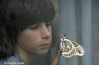 LE26-037z   Cecropia Moth - girl touching adult moth though screen - Hyalophora cecropia