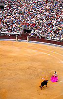 Life in Spain the crowds and the excitement of the sport of bull fighting in Madrid Spain