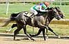 Sovereign Citizen winning at Delaware Park on 8/1/11.