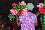 People and Life - Trinidad