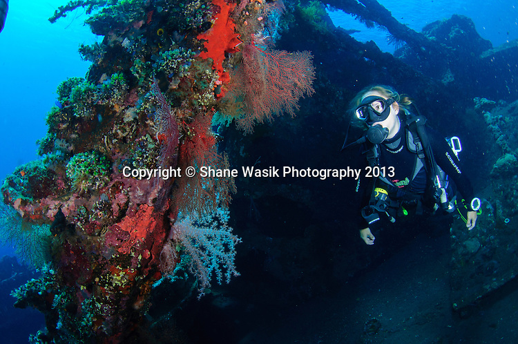 Steffi checks out the colourful coral on the wreck