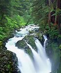 USA, Washington, A waterfall  in Oylmpic National Park