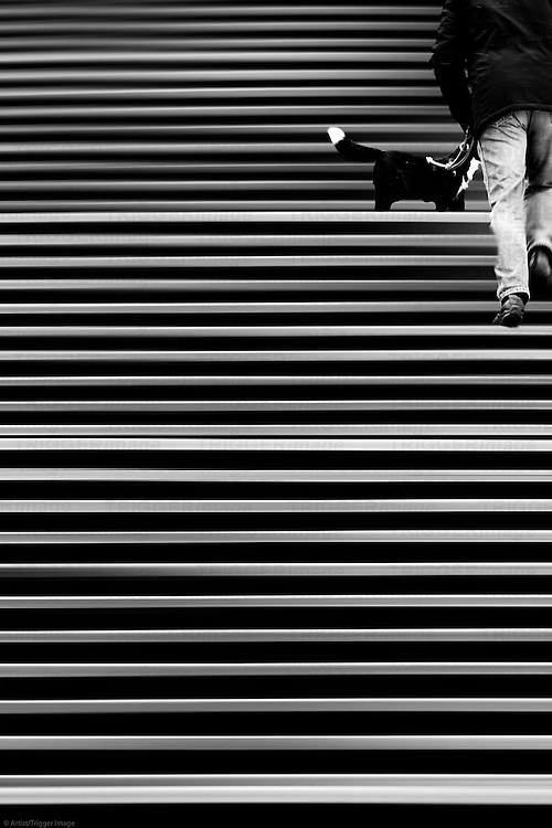The abstract montage of a staircase where a man walks up with his dog.