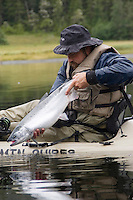 Kayak fishing for Silver salmon (Coho) in the Valdez, Alaska area of south central Alaska with Pacific Mountain Guides outfitter Otto Kulm. Fishing was done in both salt water and fresh water in the Prince William Sound region. Otto Kulm with a nice coho caught fly fishing in salt water.