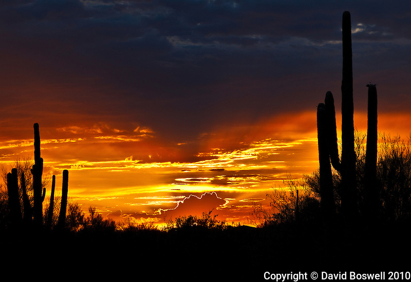 Sunset on July 14, 2010 in Oro Valley, Arizona.