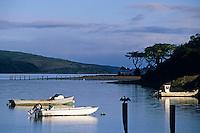 California, Tomales Bay, Boats on the Bay at Marshall