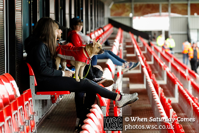 Salford City 2 FC United of Manchester 1, 15/07/2017. Moor Lane, Pre Season Friendly. A dog in club colours waits for the game to begin. Salford City v FC United of Manchester in a pre season friendly at Moor Lane Salford. Photo by Paul Thompson.
