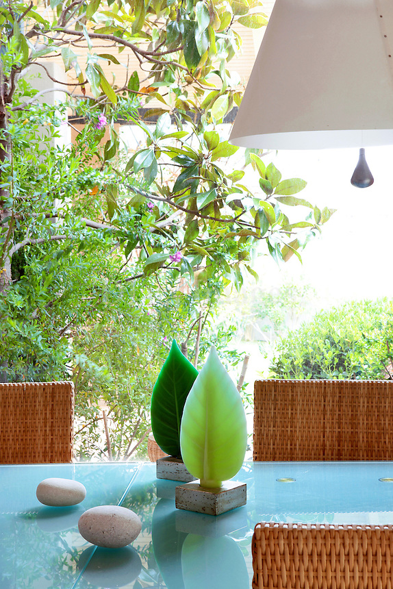 plants in the dining room