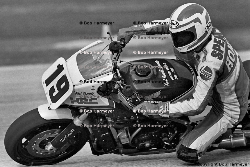 DAYTONA BEACH, FL: Freddie Spencer rides in the AMA race at Daytona International Speedway in Daytona Beach, Florida, on March 11, 1984.