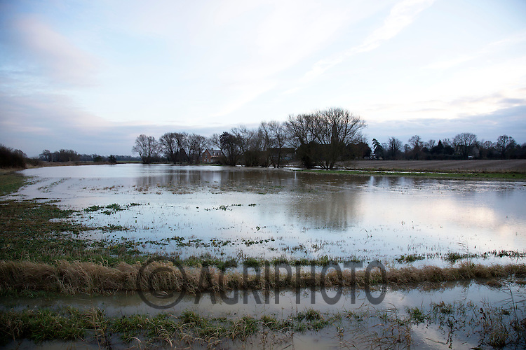 24.12.2012 Lincolnshire: A Crop of Oil Seed Rape flooded in December 2012.©Tim Scrivener Photographer 07850 303986