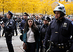 UNITED STATES, NEW YORK November 15, 2011..Occupy Wall Street Protest evicted by The Police from Zuccotti park  . in New York November 15 , 2011. VIEWpress / Kena Betancur.New York police evicted Occupy Wall Street protesters from a park in the city's financial district early on Tuesday, two months after they set up camp and sparked a national movement against economic inequality...Local Media Report