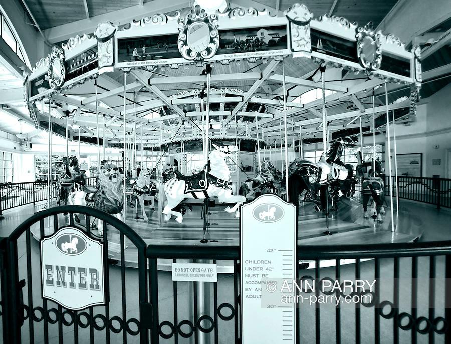 Nunley's Carousel at Museum Row, Garden City, Long Island, New York, USA, 2012, taken with 180-degree fisheye lens