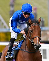 Welcome Surprise ridden by Jason Watson goes down to the start of The Simon & Nerys Dutfield Memorial Novice Stakes   during Afternoon Racing at Salisbury Racecourse on 16th May 2019