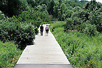 A man and a woman talk as they walk down a wooden path over wetlands and into the woods.