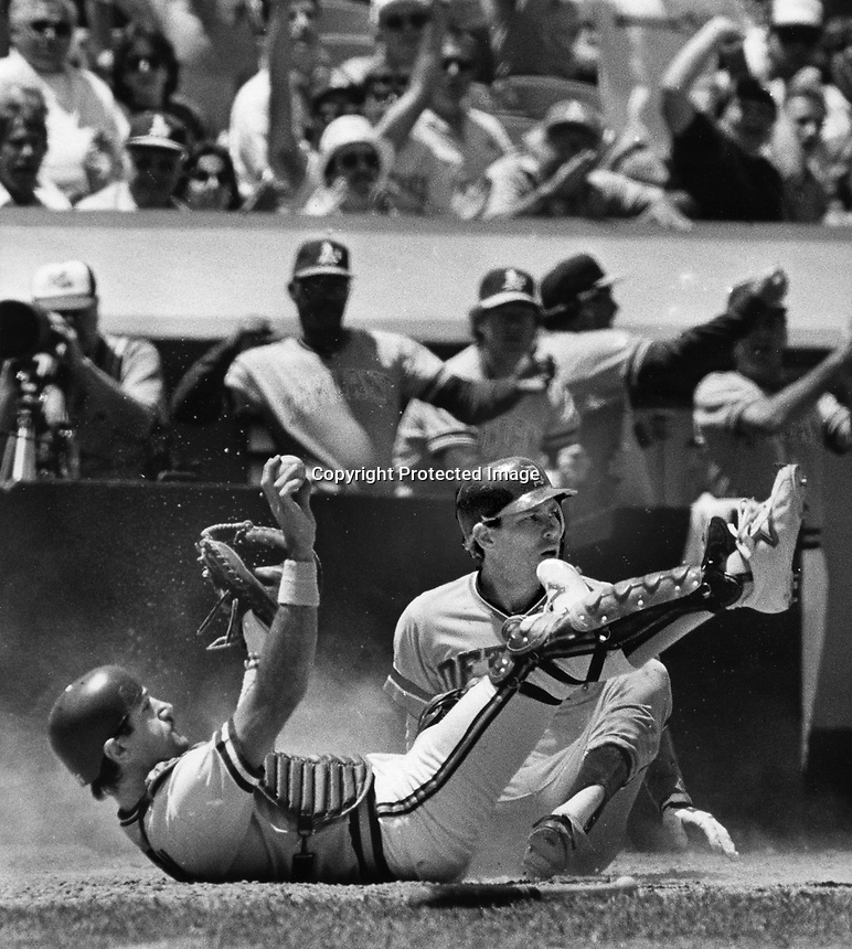 A's catcher Jim Essian holds the ball after tagging Detroit runner Alan Trammel. (1984 photo by Ron Riesterer)