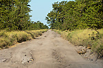 CHOBE NATIONAL PARK - SAVUTI MARSH, BOTSWANA - MAY 17, 2010: The Savuti Marsh area constitutes the western stretch of the Chobe National Park in northern Botswana. (Photo by Dirk Markgraf)