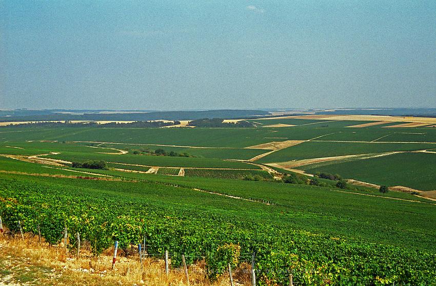 Chablis: La Grande Vallee looking toward the Chablis village