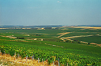 Chablis: La Grande Vallee looking toward the Chablis village