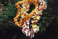 Maile and plumeria leis with ferns on moss covered rock before a hula dance