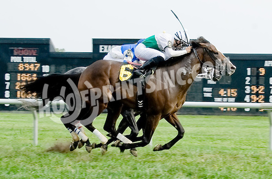 Fugitive Angel winning at Delaware Park on 9/17/12 earning Jonathan E. Sheppard his 3000th Win!
