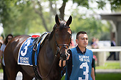 5th Bed O Roses Stakes - Separationofpowers