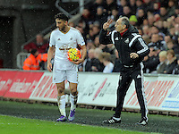 Swansea head coach Francesco Guidolin (R) gives Neil Taylor instructions during the Barclays Premier League match between Swansea City and Crystal Palace at the Liberty Stadium, Swansea on February 06 2016