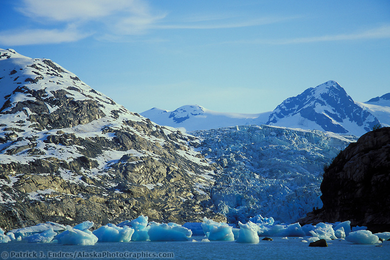 Glacier icebergs, calved off of Nellie Juan glacier, floating in Nellie Juan Lagoon, Prince William Sound, Alaska