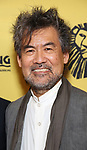 David Henry Hwang attends the 20th Anniversary Performance of 'The Lion King' on Broadway at The Minskoff Theatre on November e, 2017 in New York City.
