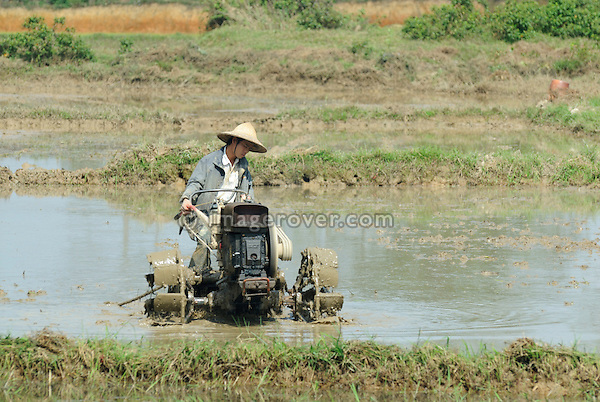 Asia, Vietnam, Hue. Vietnamese farmer working in the field.