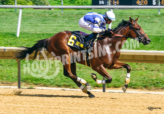 Greatbullsoffire winning The Strike Your Colors Stakes at Delaware Park on 8/4/16