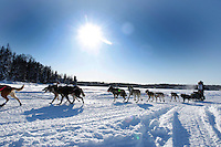 Merissa Osmar runs on the in-bound trail nearing the finish line of the 2009 Junior Iditarod in Willow, Alaska.   .March 1, 2009