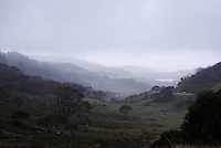 Dead Horse Gap, Thredbo, Snowy Mountains, NSW, Australia