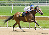 She Be Bunny winning at Delaware Park racetrack on 6/18/14