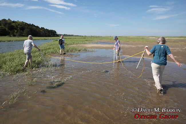 Bob, Diane, Mary & Judith  On Horseshoe Crab Survey