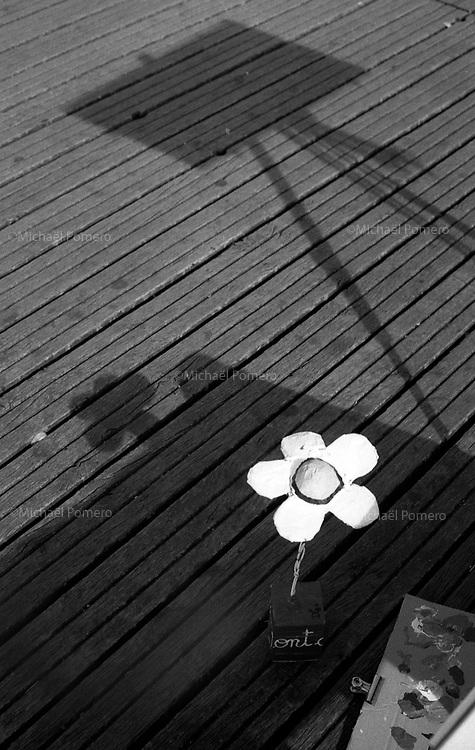 10.2010 Paris (&icirc;le de france)<br /> <br /> La fleur et le chevalet de David Manuel Garcia artiste sur le pont des arts.<br /> <br /> The flower and the bridge of artist David Manuel Garcia on the Pont des Arts.