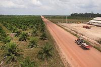 Produção de dendê da Biovale.<br /> Mojú, Pará, Brasil.<br /> Foto Paulo Santos<br /> 11/11/2010.