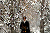 The guard at the Tomb of the Unknown Soldier at Arlington National Cemetery, Va., on a snowy day, January 27, 2009.