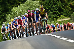 The peloton led by the Panzer Wagon Tony Martin (GER) Team Jumbo-Visma during Stage 7 of the 2019 Tour de France running 230km from Belfort to Chalon-sur-Saone, France. 12th July 2019.<br /> Picture: ASO/Alex Broadway | Cyclefile<br /> All photos usage must carry mandatory copyright credit (© Cyclefile | ASO/Alex Broadway)