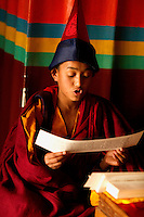 Buddhist Lama Monk chanting from a scroll, at a monastery from the Himalayan belt
