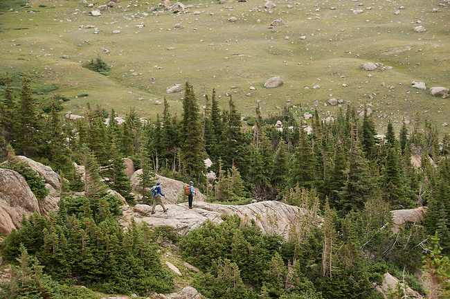 couple hiking, (MR), hike, subalpine, spruce, fir, tree, Rocky Mountain, landscape, high elevation, recreation, outdoors, activity, adventure, August, afternoon, Rocky Mountain National Park, Colorado, USA