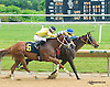 Big Zapple winning at Delaware Park on 6/15/15