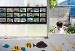 A young volunteer participating in the Team Tyura Sango coral reef restoration project looks around a coral nurturing facility in Onna Village, Okinawa Prefecture, Japan, on Saturday, June 23, 2012. Participants are given the chance to put their names onto pieces of coral that are placed into the tanks before being bolted to the sea bed in the nearby bay. Photographer: Robert Gilhooly