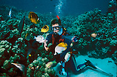 Scuba diver feeding reef fish