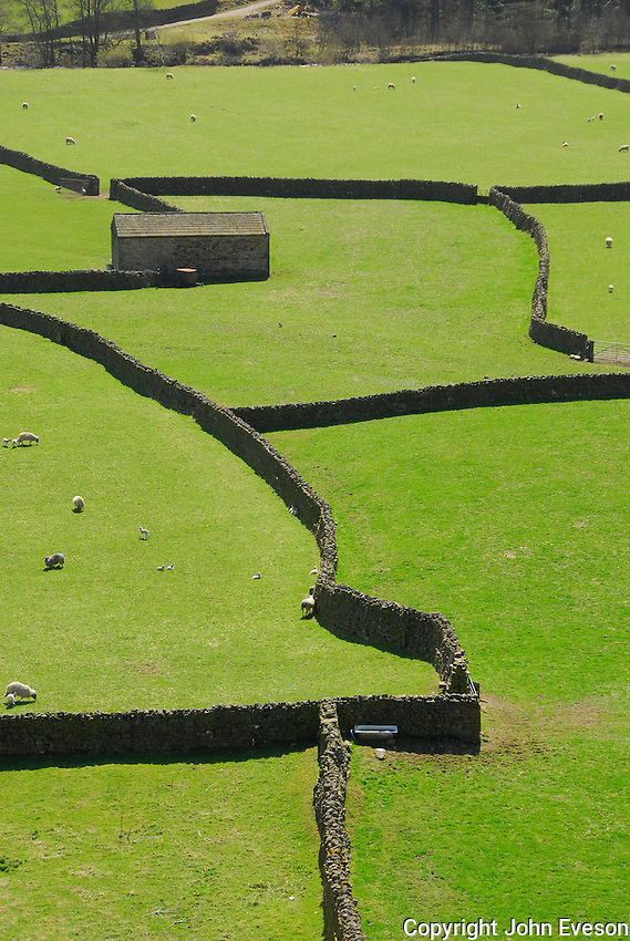 Stone barn and walls near Gunnerside, North Yorkshire.