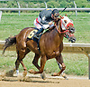 Play Eighteen winning at Delware Park on 7/30/12