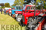 Vintage tractors on display at the O'Riadas Vintage & Family Fun Day in Ballymac on Sunday.