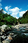 New Zealand: Karangahake,  Photo: nzauk105.Photo copyright Lee Foster, www.fostertravel.com, 510/549-2202, lee@fostertravel.com